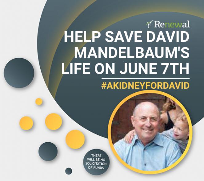 Kidney4David.png