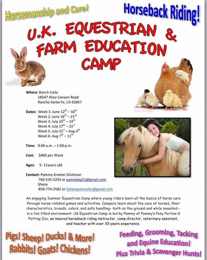 horse camp.jpg