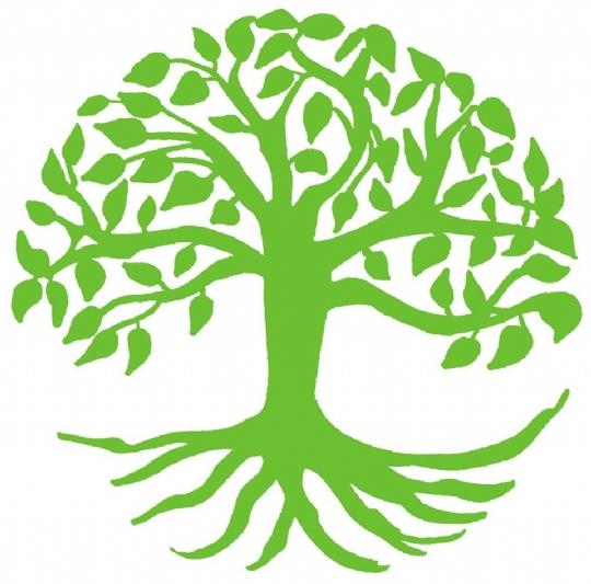 TuB tree.jpg